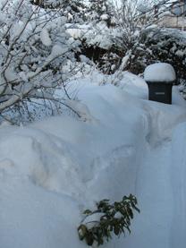 Schnee schippen | GARTEN-GUI.DE