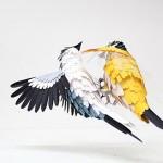Papiervogel 5 | SCHÖNES ZUHAUSE