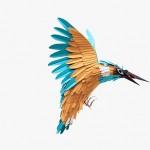 Papiervogel 4 | SCHÖNES ZUHAUSE