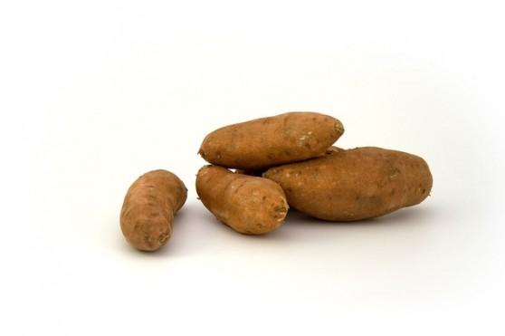 """Sweet Potato - Foto:PublicDomainPictures / <a href=""""http://pixabay.com/p-1807/"""">Pixabay</a>"""