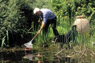 Im Herbst gibt es im Gartenteich einiges zu tun, damit Pflanzen und Tiere im feuchten Idyll sicher und wohlbehalten durch den Winter kommen. Foto: djd/Söchting Biotechnik