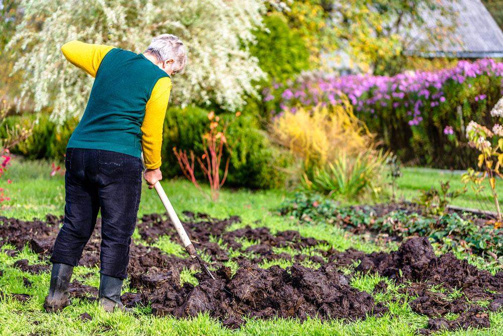 Garten für Frühjahr vorbereiten