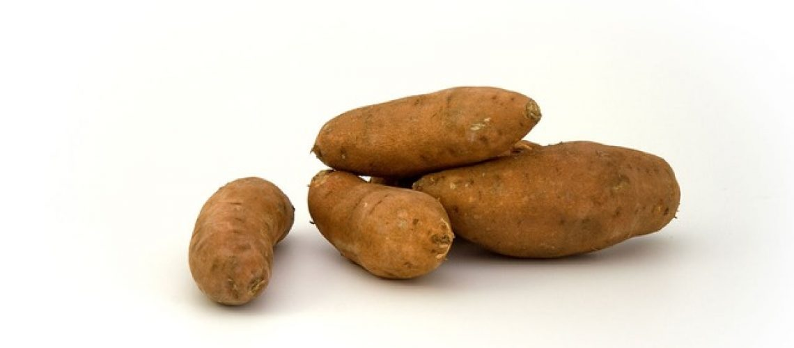 Süßkartoffeln - Foto:PublicDomainPictures / Pixabay
